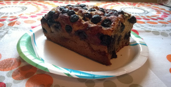Blueberry Coffee Cake Loaf